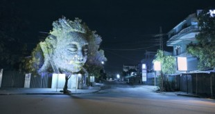 Projection sur arbre au Cambodge