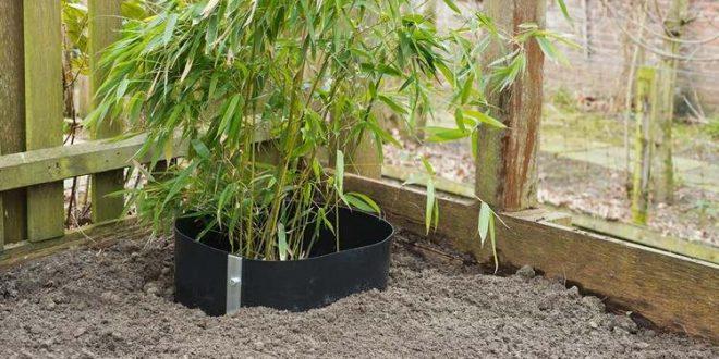 barrières anti-rhizomes et anti-racines : des protections efficaces