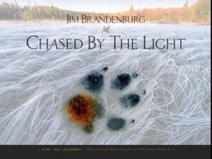 Chased by the light de Jim Brandenburg