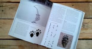 Le guide des traces d'animaux