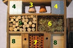 tous les articles avec le tag insecte nature obsession. Black Bedroom Furniture Sets. Home Design Ideas