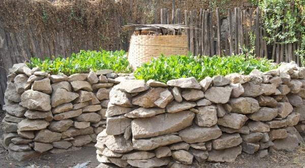 Jardin en trou de serrure | Photo : www.dsnyderphotography.com