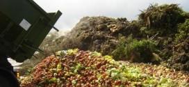 Semaine de la lutte contre le gaspillage alimentaire