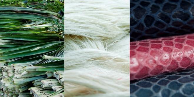 Fibre d'ananas cuir Pinatex