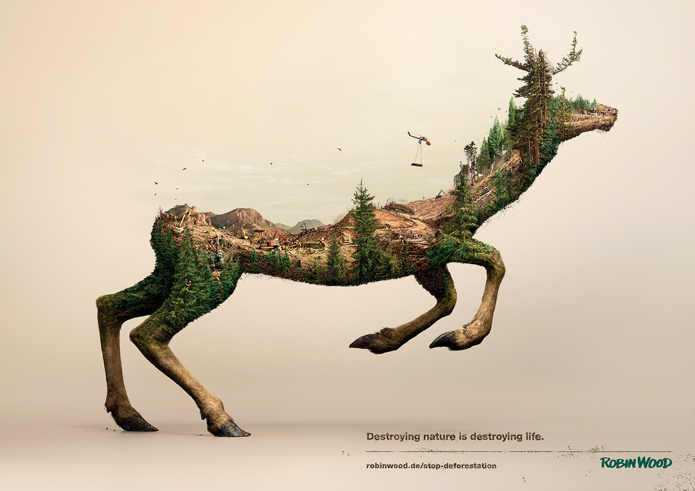 stop-deforestation-robin-wood